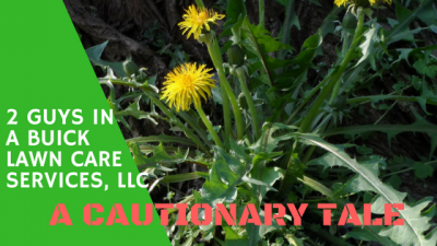 Protect your property and your finances. Always ask for a copy of private contractor's insurance. That includes landscapers, masons, arborists, tree trimers and anyone who is working on your property. daigletravers.com