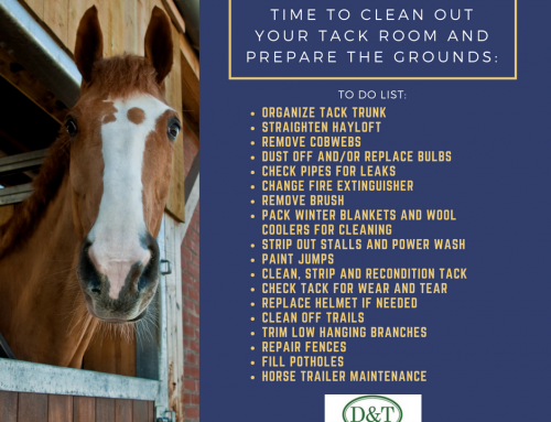 Time To Clean Your Tack Room